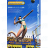 Beach Spikers Arcade Software GD ROM and IC