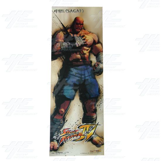 Street Fighter 4 Poster - Set of 10 - Sagat