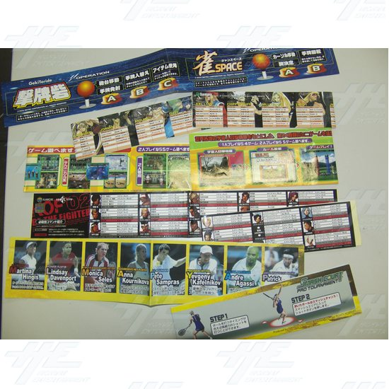 Assorted Set of Player Instructions and Stickers - Japanese - Assorted Set of Player Instructions and Stickers - Japanese