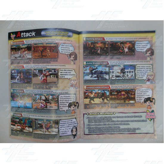 Tekken Tag 2 Tournament Player Instructions (Brand New) - Tekken Tag 2 Tournament Player Guide Inside View